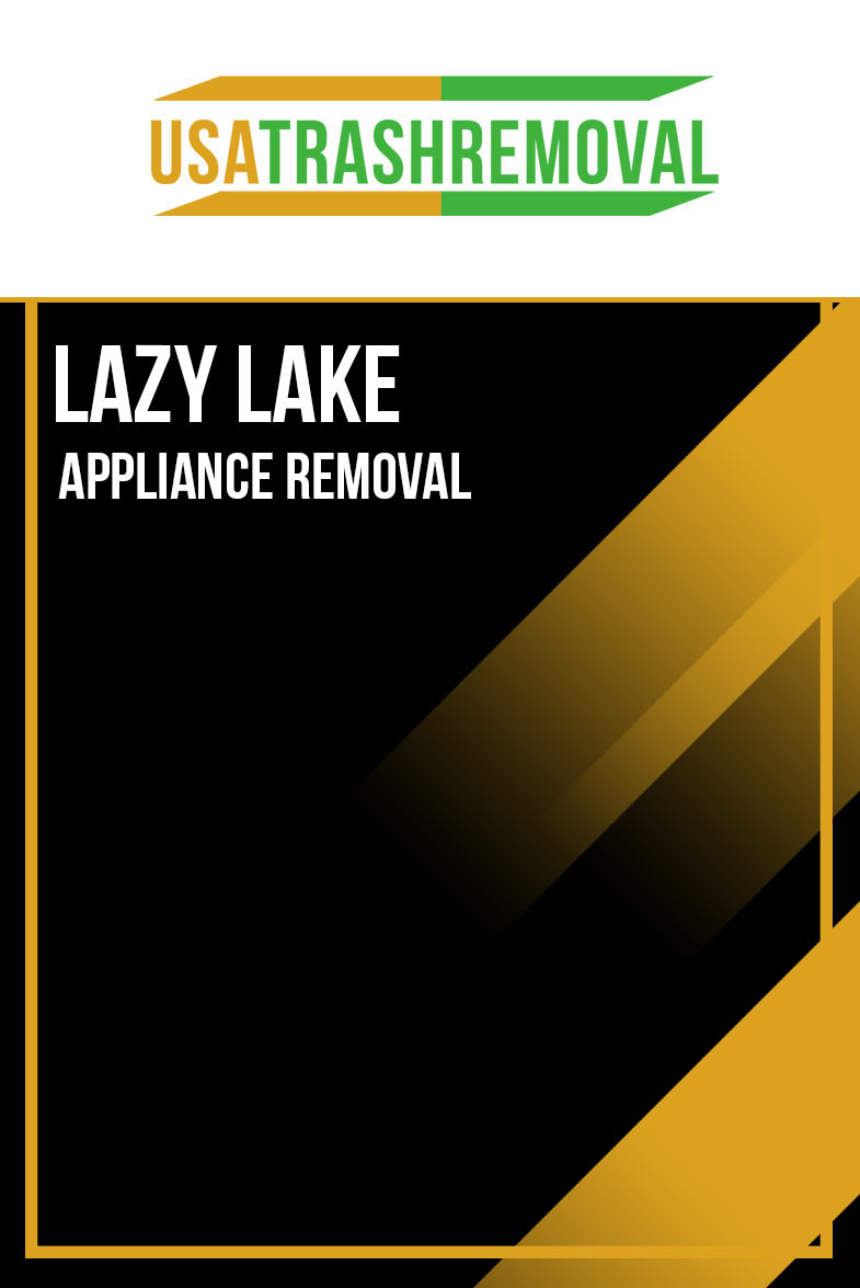 Lazy Lake Appliance Removal
